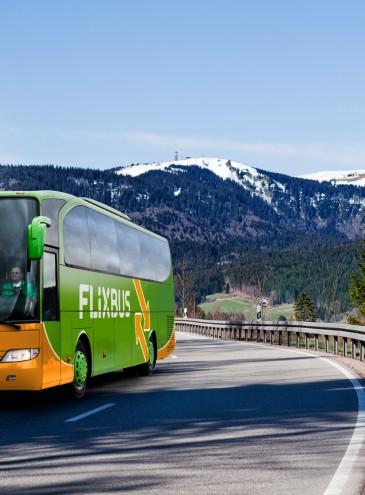 Автобусы международного оператора возобновляют поездки из Киева и Одессы в Польшу, Чехию и Германию