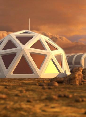 Из чернобыльского грибка создадут щит от радиации для поселений землян на Луне и Марсе