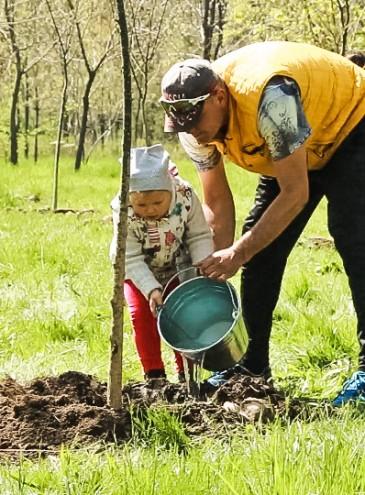 В октябре в Киеве высадят 100 тысяч деревьев: присоединиться может каждый