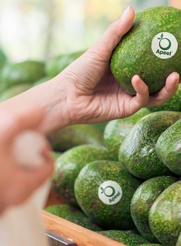 Секрет защитной пленки: американский стартап увеличил срок хранения овощей и фруктов