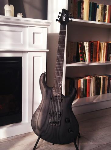 В Украине начали выпускать первую бюджетную рок-гитару