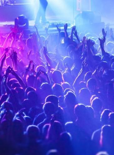 Полиция Франции не смогла разогнать подпольную рейв-вечеринку на 2 500 человек