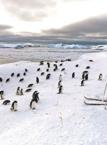 «Антарктида»: до 25-річчя української станції на континенті створили кліп