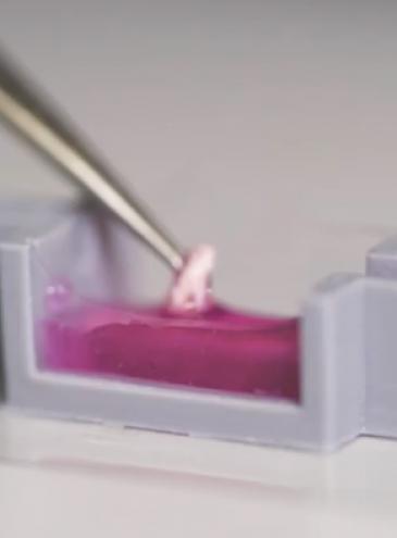 Ученые научились 3D-печати костей костей прямо в теле