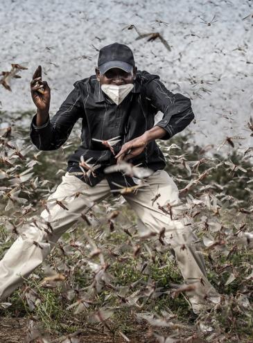 World Press Photo: лучшие журналистские снимки 2021 года